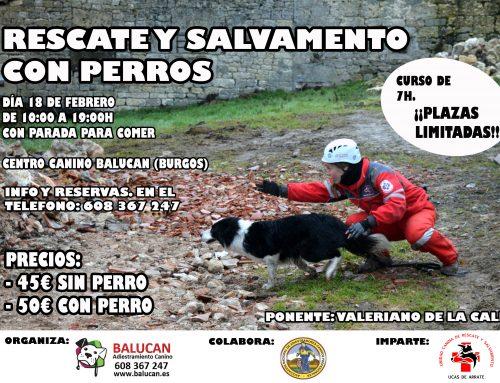 Perros  de rescate y salvamento