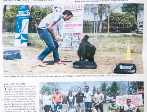 """Artículo en el Diario de Burgos: """"A donde el hombre no llega"""""""