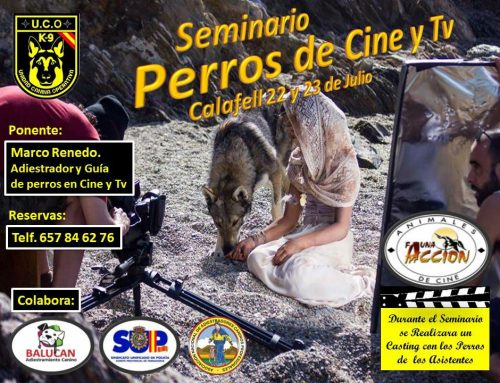 SEMINARIO PERROS DE CINE Y TV